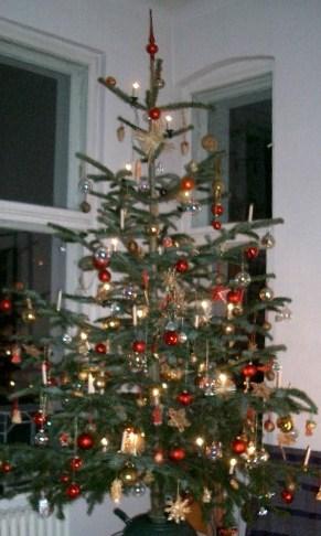 weihnachtsb ume als energielieferanten. Black Bedroom Furniture Sets. Home Design Ideas