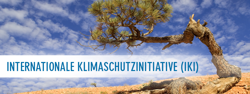 Internationale Klimaschutzinitiative - Bild international-climate-initiative.com