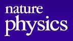 nature physics logoJPG