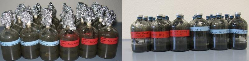 Labor - Teile der Plastiktüten knapp hundert Tage unter Bedingungen im Meeresboden - Foto © Alice Nauendorf, GEOMAR