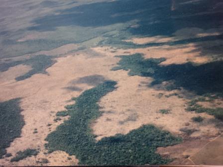 Regenwald bei Roraima_Brasilien, von Goldgräbern zerstört - Foto © Gerhard Hofmann, Agentur Zukunft