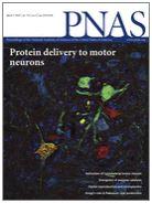 aktueller PNAS-Titel
