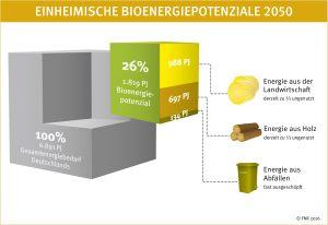 Einheimische Bioenergiepotenziale 2050 - Würfelgrafik © FNR 2016