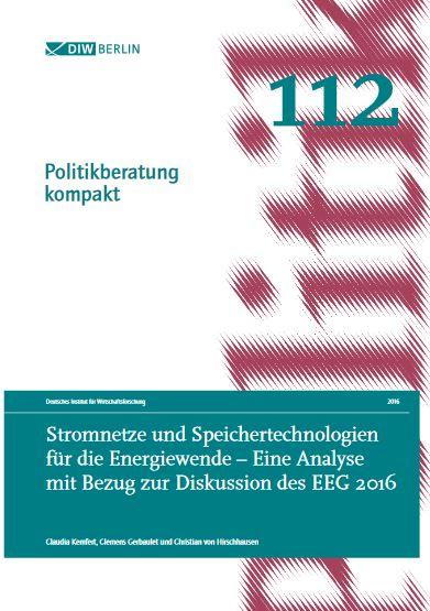 DIW-Studie Netze_Speicher_EE-Ausbau