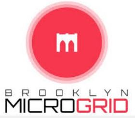 Brooklyn Microgrid - logo