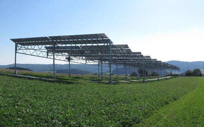 agrophotovoltaik-pilotanlage-heggelbach-strom-und-nahrungsmittelproduktion-kombiniert-foto-fraunhofer-ise
