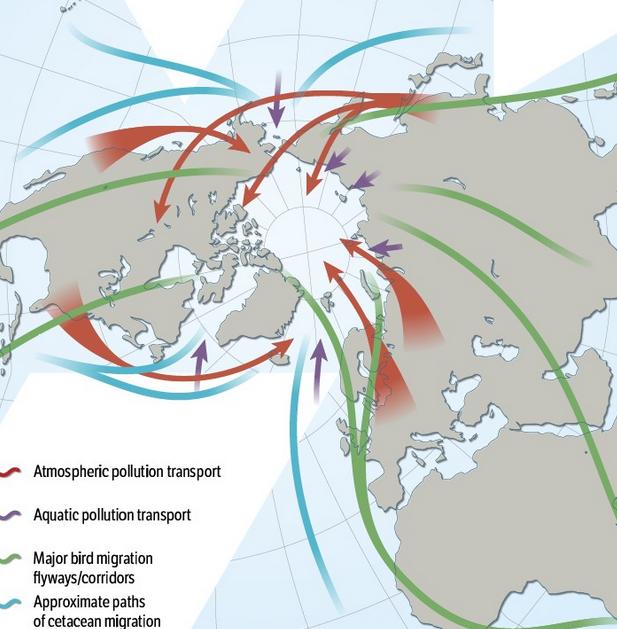 auswirkungen-der-arktiseis-schmelze-bild-the-arctic-resilience-report