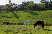 westwind-community-barn-los-altos-hills-foto-lps-1-own-work-cc0-commons-wikimedia