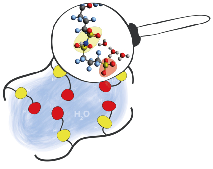 brennstoffzellen-mit-pfia-membranen-bild-heike-cords-helmholtz-berlin