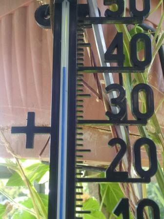40 Grad - Rekordsommer 2018 - Foto © Gerhard Hofmann für Solarify