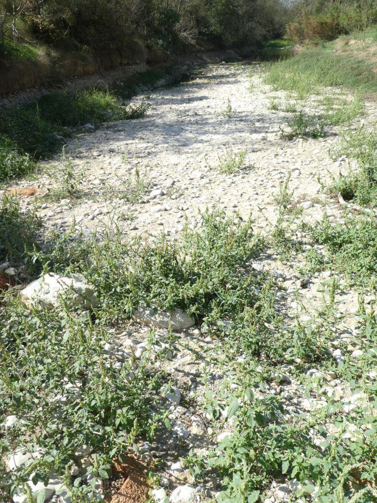 Ausgetrocknetes Flussbett in Katalonien - Foto © Agentur Zukunft für Solarify