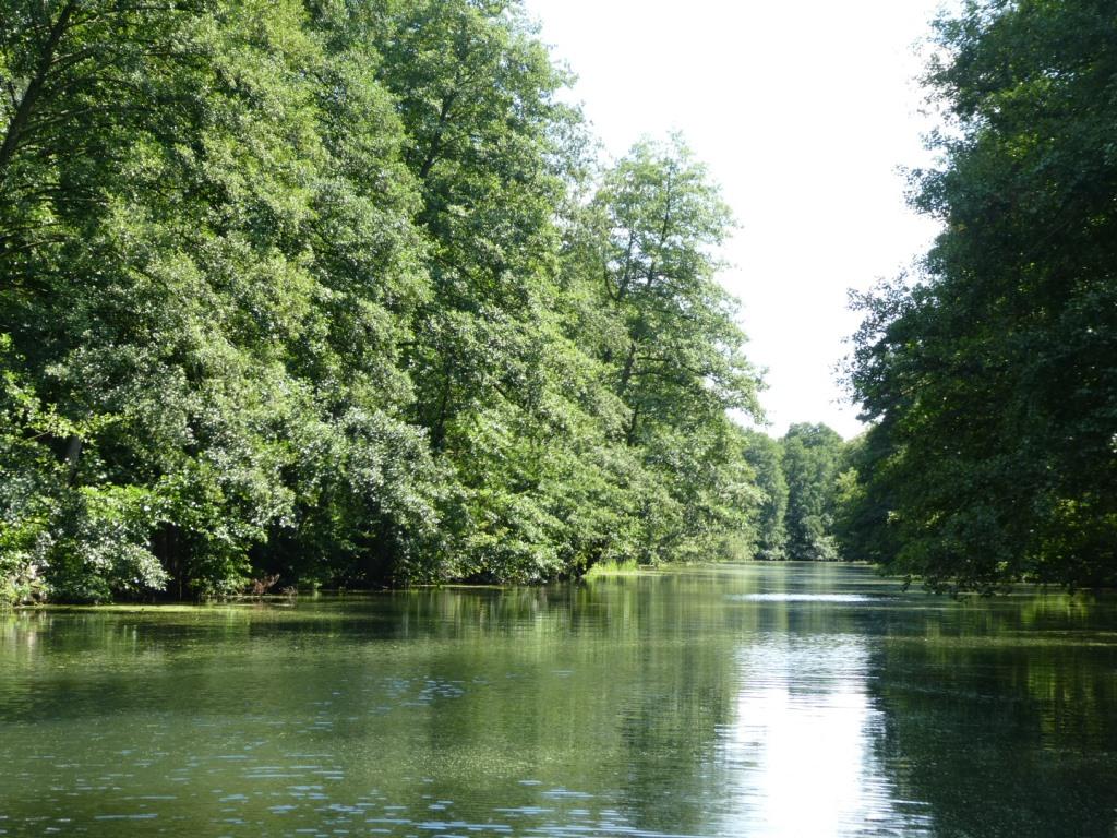Flusslandschaft an der Dahme bei Berlin - Foto © Solarify